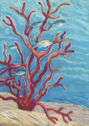 Sea Life Pastels Prints - Coral Assets Print by Patti Bruce - Printscapes