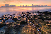 Peach Prints - Coral Beach Print by Debra and Dave Vanderlaan