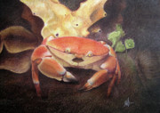 Tropics Drawings - Coral Crab by Adam Johnson