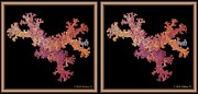 Crossview Framed Prints - Coral Fractal - Gently cross your eyes and focus on the middle image Framed Print by Brian Wallace