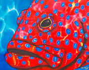 Fish Art Tapestries - Textiles Prints - Coral Groupper II Print by Daniel Jean-Baptiste