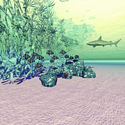 Isolated Digital Art - Coral Reef Life In The Deep Ocean by Corey Ford