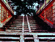 Signed Photos - Coral Stairway by Bob Whitt