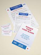 Donation Posters - Cord Blood Donation Information Poster by Tek Image