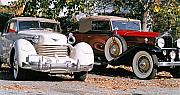 Antique Automobiles Posters - Cord Packard Poster by Paul  Trunk