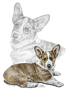 Corgi Drawings - Corgi Dog Art Print color tinted by Kelli Swan