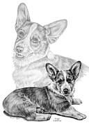 Kelly Drawings Prints - Corgi Dog Art Print Print by Kelli Swan