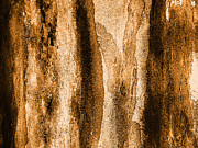 Burnt Sienna Posters - Cork Close Up Poster by Marsha Heiken