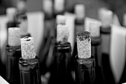 Uncork Photos - Corked by Leslie Leda