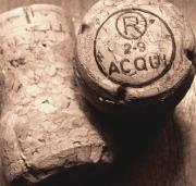 Wine Galleries Prints - Corks in Sepia Tone Print by Colleen Kammerer