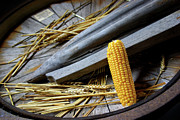 Basket Prints - Corn Cob Print by Carlos Caetano