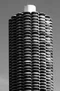 Chicago Black White Posters - Corn Cob Poster by John Gusky