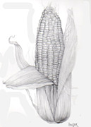 Inger Hutton Art - Corn on the Cob by Inger Hutton