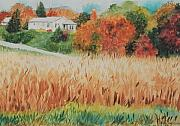 Cornfield Paintings - Cornfield in Autumn by Judy Swerlick