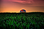 Hot Air Balloon Framed Prints - Cornfield Landing Framed Print by Emily Stauring
