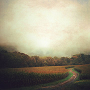 Cornfield Photos - Cornfiled Road by David Ruser