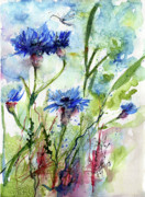 Cornflowers Korn Blumen Watercolor Painting Print by Ginette Fine Art LLC Ginette Callaway