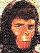 Ape Mixed Media Posters - Cornielius Mosaic Poster by Paul Van Scott