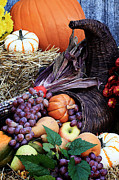 Purple Grapes Prints - Cornucopia or Horn of Plenty Print by Stephanie Frey