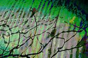 Corregated Shadows Print by Jan Amiss Photography
