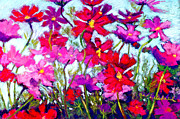 Wind Pastels Posters - Cosmos Bouncing In The Breeze Poster by Cheryl Whitehall