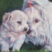 Coton De Tulear Framed Prints - Coton De Tulear with pup Framed Print by Lee Ann Shepard