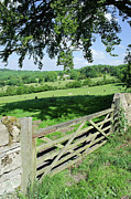 Gate Photo Prints - Cotswolds Print by Soundimageplus