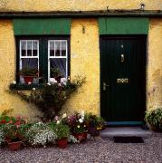 Flowerpots Framed Prints - Cottage At Bushmills, Co Antrim, Ireland Framed Print by The Irish Image Collection