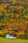 Colors Of Autumn Framed Prints - Cottage In Front Of Autumn Colours Framed Print by John Sylvester