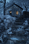 Cabin Window Posters - Cottage in the Woods at Night Poster by Jill Battaglia