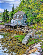 Tom Schmidt Acrylic Prints - Cottage In Wiscasset Maine Acrylic Print by Tom Schmidt