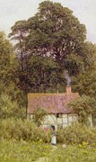 Tall Tree Paintings - Cottage near Brook  by Helen Allingham