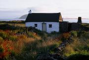The White House Prints - Cottage, Near Dunquin, Dingle Print by The Irish Image Collection