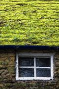 Architectural Exterior Prints - Cottage With Grass Growing On Roof Print by John Short