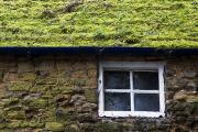 Architectural Exterior Prints - Cottage With Grassy Roof Print by John Short