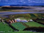 The Economy Art - Cottages At Gortahork, Co Donegal by The Irish Image Collection