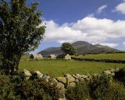 Mourne Prints - Cottages On A Farm Near The Mourne Print by The Irish Image Collection