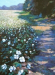 Featured Painting Posters - Cotton Field Poster by Jeanette Jarmon