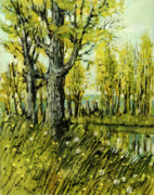 Cottonwood Paintings - Cottonwood Pond by Steve Spencer