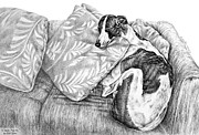 Pencil Drawing Drawings Posters - Couch Potato Greyhound Dog Print Poster by Kelli Swan