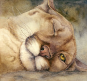 Mountain Lion Paintings - Cougar    I See You     by Bonnie Rinier