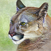 Mountain Lion Paintings - Cougar by Bonnie Rinier