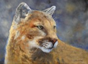 Mountain Lion Paintings - Cougar by Debra Mickelson