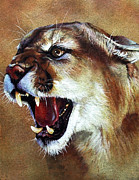 Southwest Art Paintings - Cougar by J W Baker