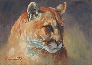 Jim Clements - Cougar