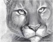 Mountain Drawings Prints - Cougar Spirit Print by Carla Kurt
