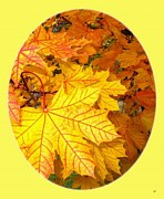 Fall Leaves Prints - Country Color 18 Print by Will Borden