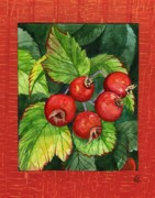 Carrie Auwaerter - Country Crab Apples