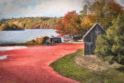 Farming Digital Art - Country Cranberry Farm by Gina Cormier