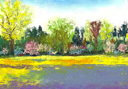 Yellow Pastels Originals - Country Garden by David Patterson